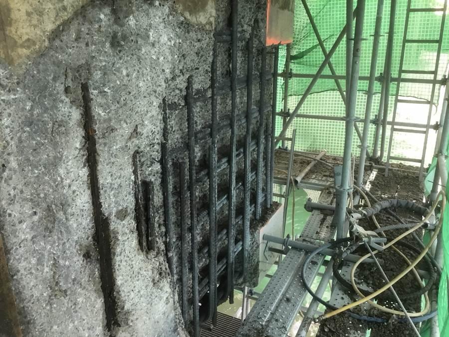 concrete dolphin remediation gladstone
